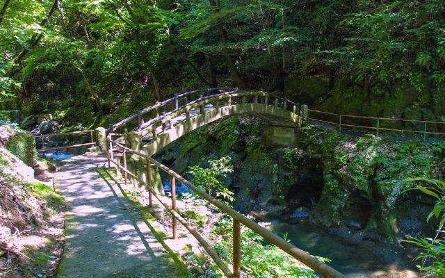 天岩戸神社の遊歩道