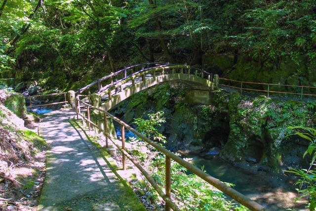 天岩戸神社・遊歩道