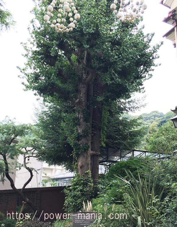 英国館の木