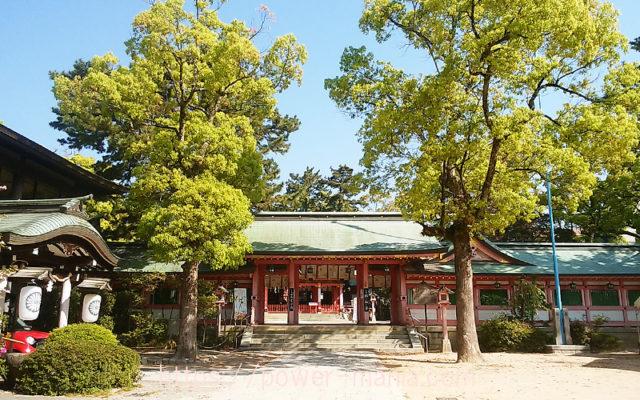 長田神社の参道から見える神門