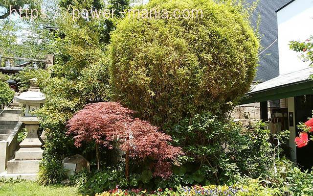 一宮神社の手入れの行き届いた庭