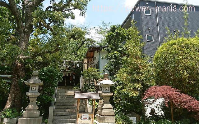 一宮神社の階段