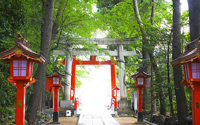 馬橋稲荷神社の境内からの眺め