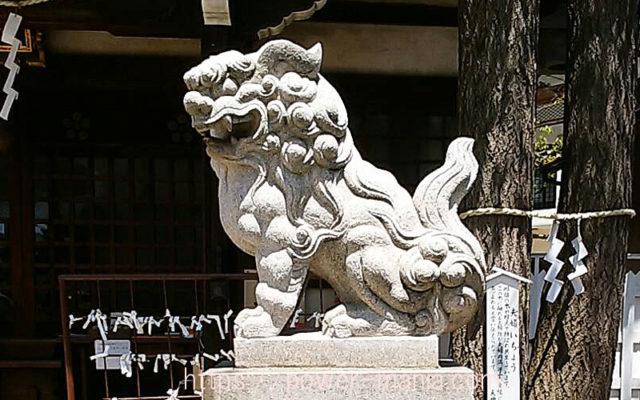 柳原天神社の拝殿右の狛犬