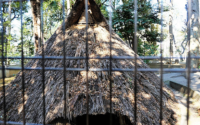 代々木八幡宮の竪穴式住居