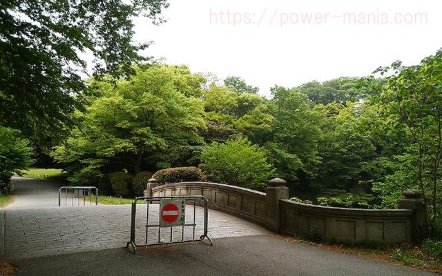 明治神宮の境内途中の橋