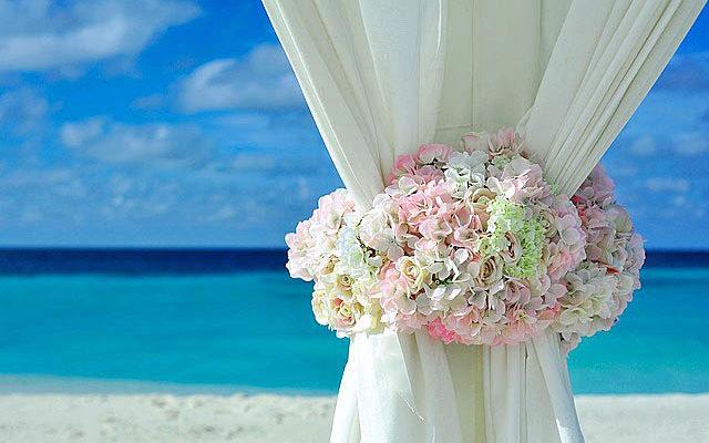 ブルーの海と恋のイメージの花