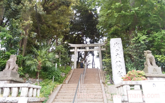 代々木八幡宮の石段