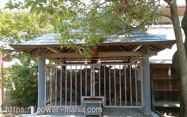 船寺神社の岩楠社・御神木