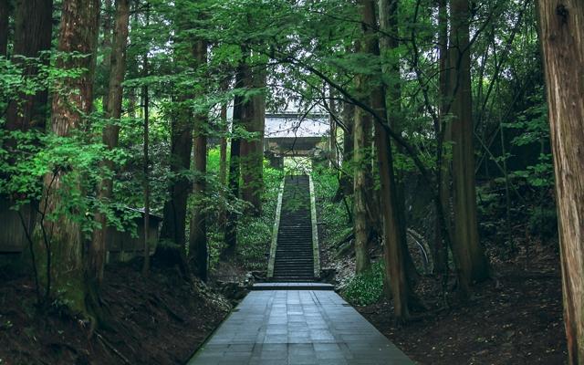 パワースポット・お寺