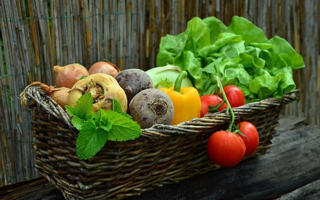 身体が喜ぶ食事のイメージ・色とりどりの野菜