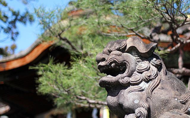 大将軍八神社・狛犬