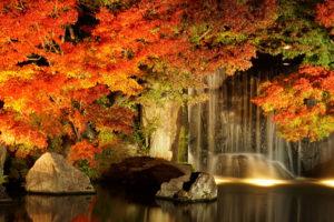 好古園の池・紅葉