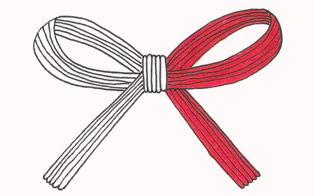 のし袋の紅白の水引のイラスト