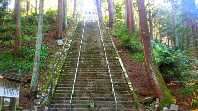 身延山久遠寺のへの凄い階段