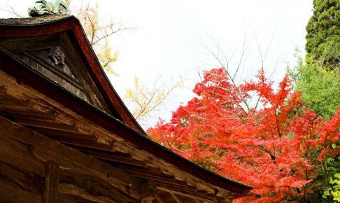 清水寺境内の紅葉