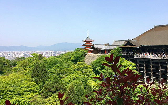 清水寺の絶景