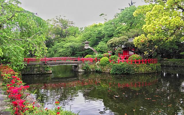 三嶋大社の神池