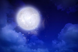 満月の青い夜のイラスト