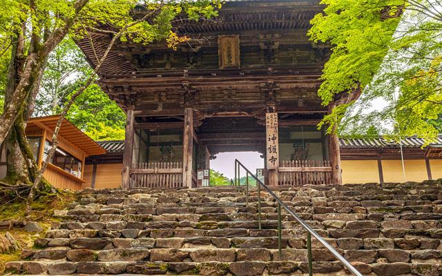 神護寺の三門