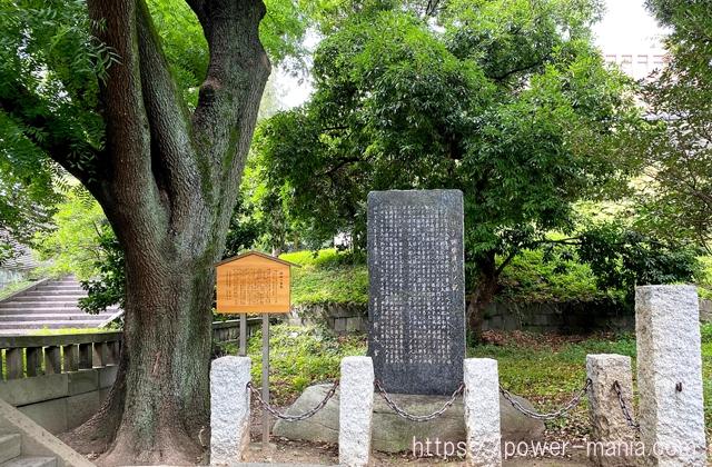 楷樹と石碑