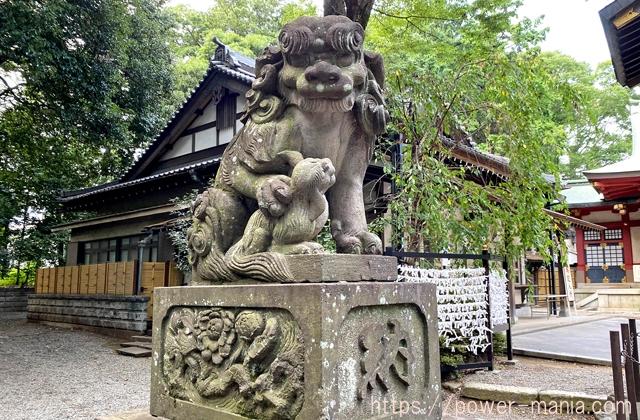 参道左手の狛犬