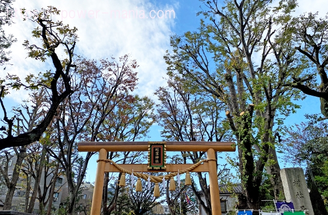 上神明天祖(蛇窪)神社の金の鳥居